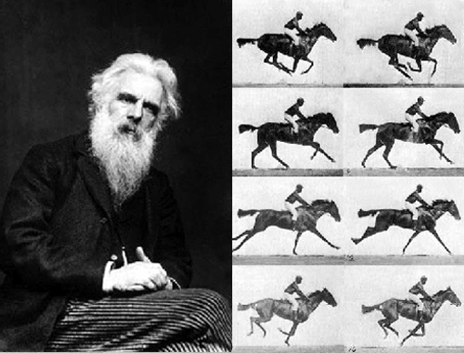Muybridge's The Horse in Motion