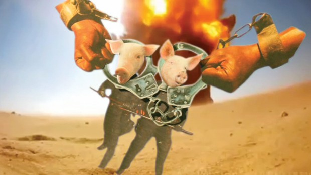 Pen Up the Pigs
