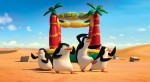 The Penguin of Madagascar