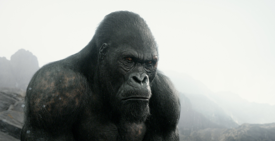Tarzan of the Apes Analysis
