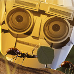 The Robot and the Ant