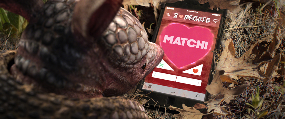 Housespecial S Armadillo Love Story Makes A Date With