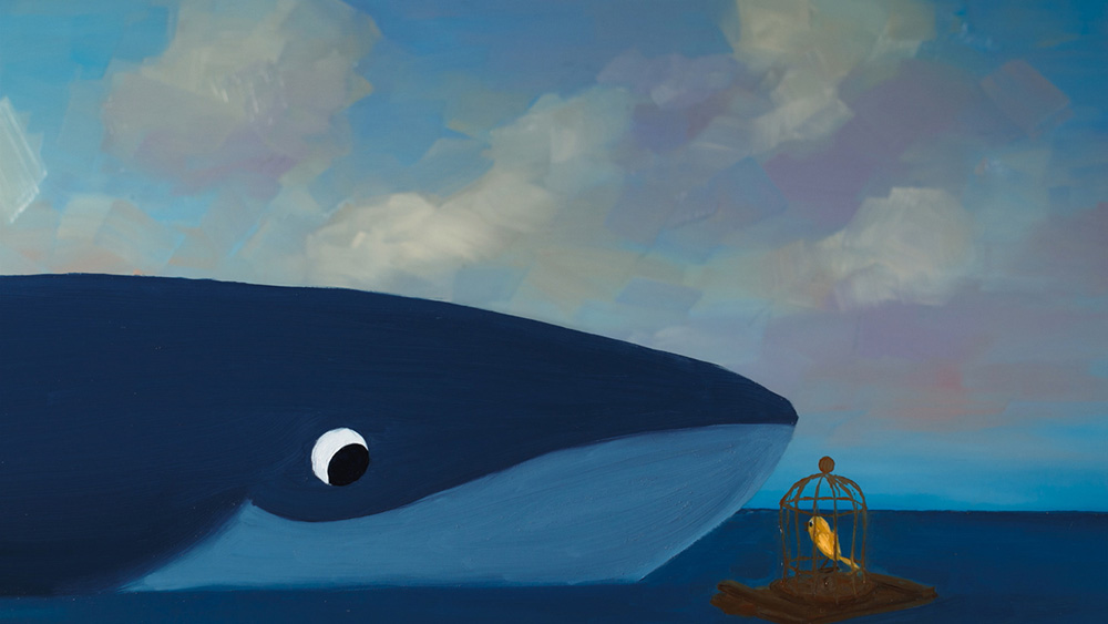 Bird and the Whale