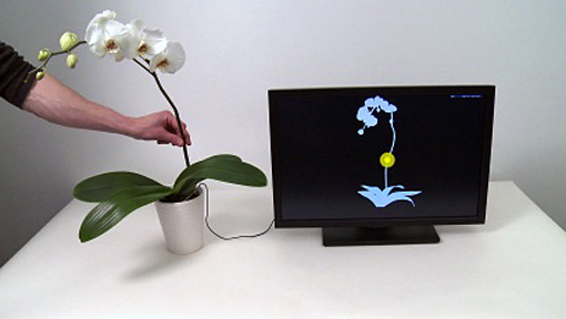 BOTANICUS INTERACTICUS is a technology for designing highly expressive interactive plants, both living and artificial. With a single wire placed anywhere in the soil, it transforms plants into multi-touch, gesture-sensitive, and proximity-sensitive controllers that can track a broad range of human interactions seamlessly, unobtrusively, and precisely.