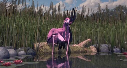 Tomer Eshed's Flamingo Pride