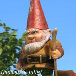 gnomeobo150