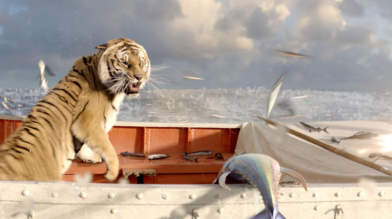 Life Of Pi Boat Diagram
