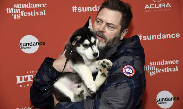 Voice star Nick Offerman poses with a husky puppy at the 2018 Sundance Film Festival debut of White Fang [Photo: Chris Pizzello/Invision/AP]