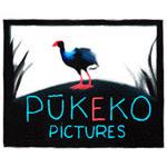 pukeko-pictures-150