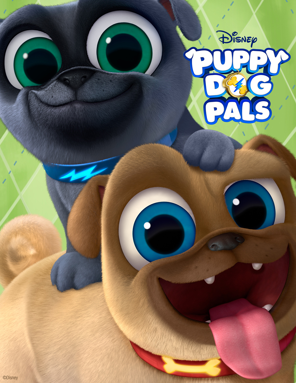 Puppy Dog Pals Cartoon