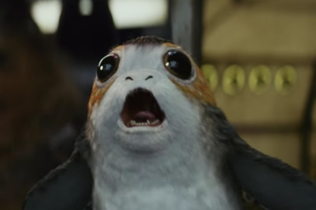 Porg from Star Wars: The Last Jedi