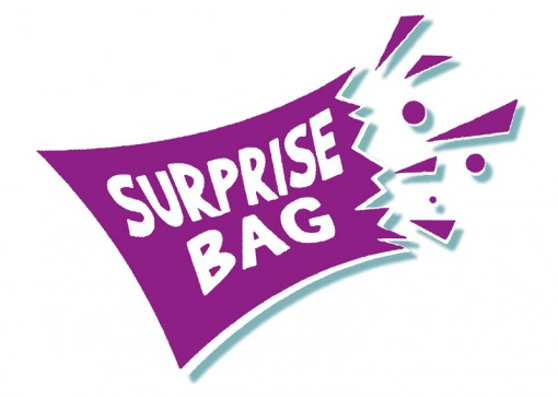Surprise Bag, Inc.