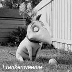 tim-burtons-frankenweenie-150