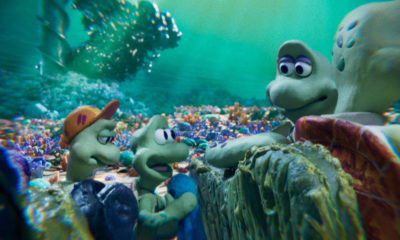 Turtle Journey